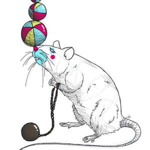 Ilustración rata