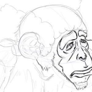 sketching. Mono.